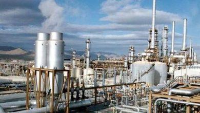 صناعة البتروكيماويات المصرية