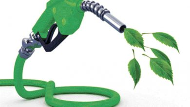 الوقود الحيوي